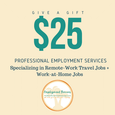 give a give professional employment services