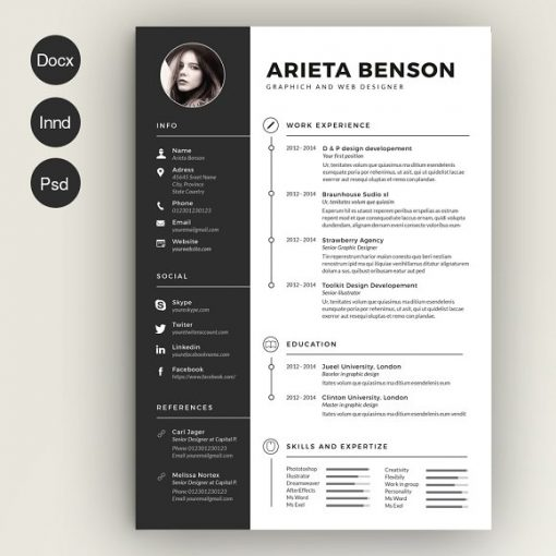 clean resumes cv template dream job